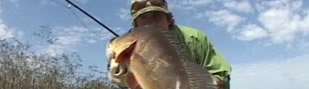 2007 Drake Magazine Fly Fishing Video Awards