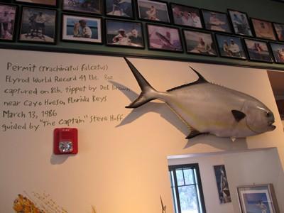 Florida Keys Outfitters thrives on Tarpon fishing.
