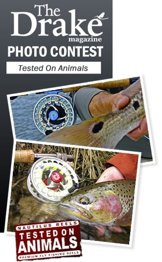 Drake Magazine Photo Contest