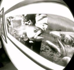 photo-58