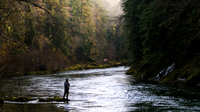 Clyde close to Seattle, stopping for steelhead hunting.