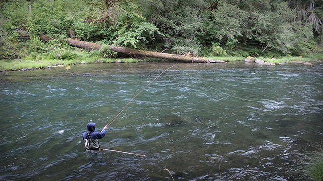 Spencer has served as the full-time Fishwatch Caretaker for The North Umpqua Foundation