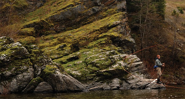 The Greatest Steelhead State that Never Was