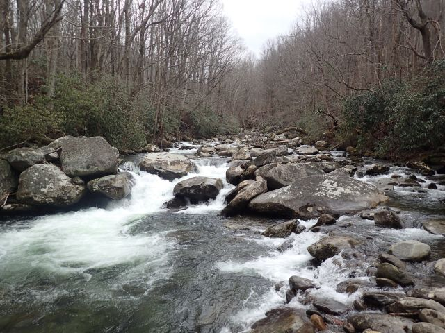 Smoky Mountain Trout Stream - Flyfishing podcast