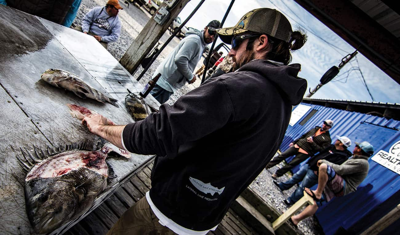 Miles Larose, making sheepy steaks out of the only three sheephead caught that day.