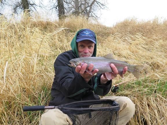 17 Wade Fish