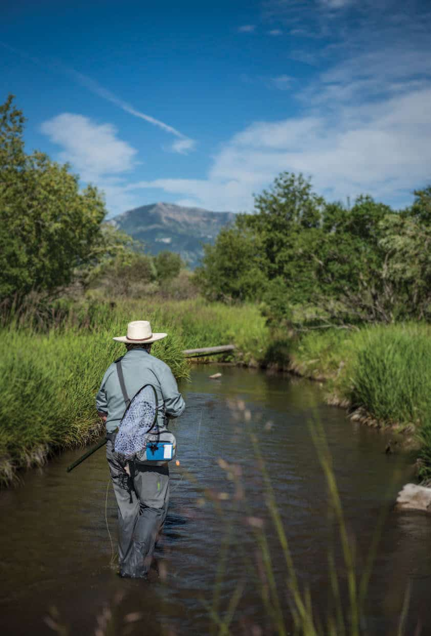 SMALL-STREAM ANGLING OPPORTUNITIES ABOUND IN UNOFFICIAL ABSAROKA.