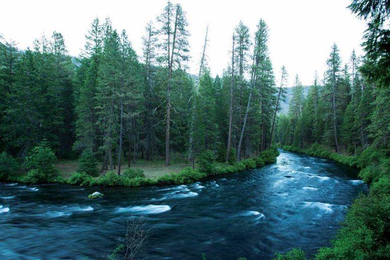 Oregon's Metolius River