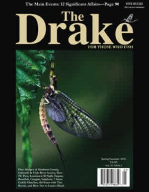 2010_spring_cover