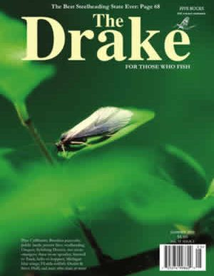 2011_summer_cover