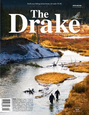 2013_fall_cover