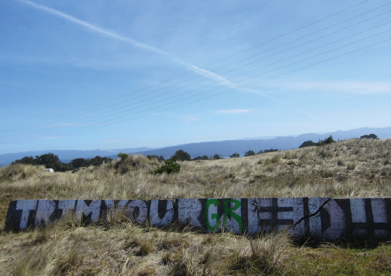 WEED-Y GRAFFITI IN THE EMERALD TRIANGLE