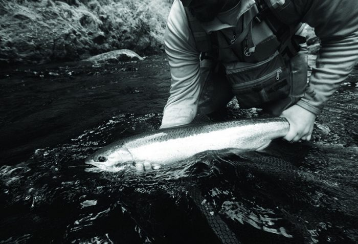 Drake Magazine Podcast Northwest Steelhead
