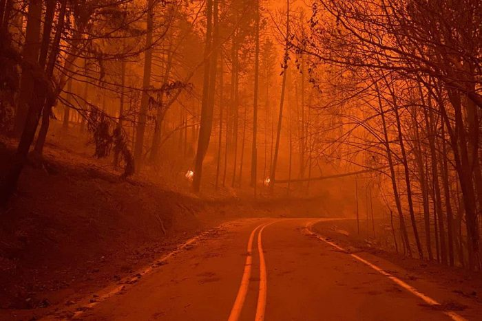 Archie Creek Fire along the Umpqua Hwy (OR 138) Photo taken Sept. 12, 2020. INCIWEB/NWCG (National Wildfire Coordinating Group)