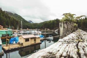 Elfin Cove Overview